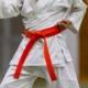 Coppa di Natale di Karate