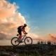 Selve di Roma: un'escursione in bicicletta alla scoperta del verde cittadino